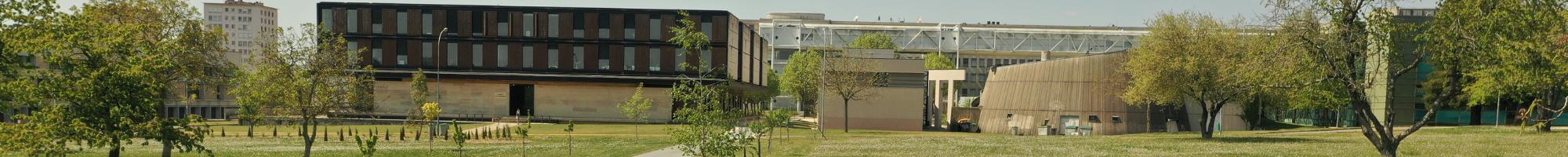 Bandeau - Université